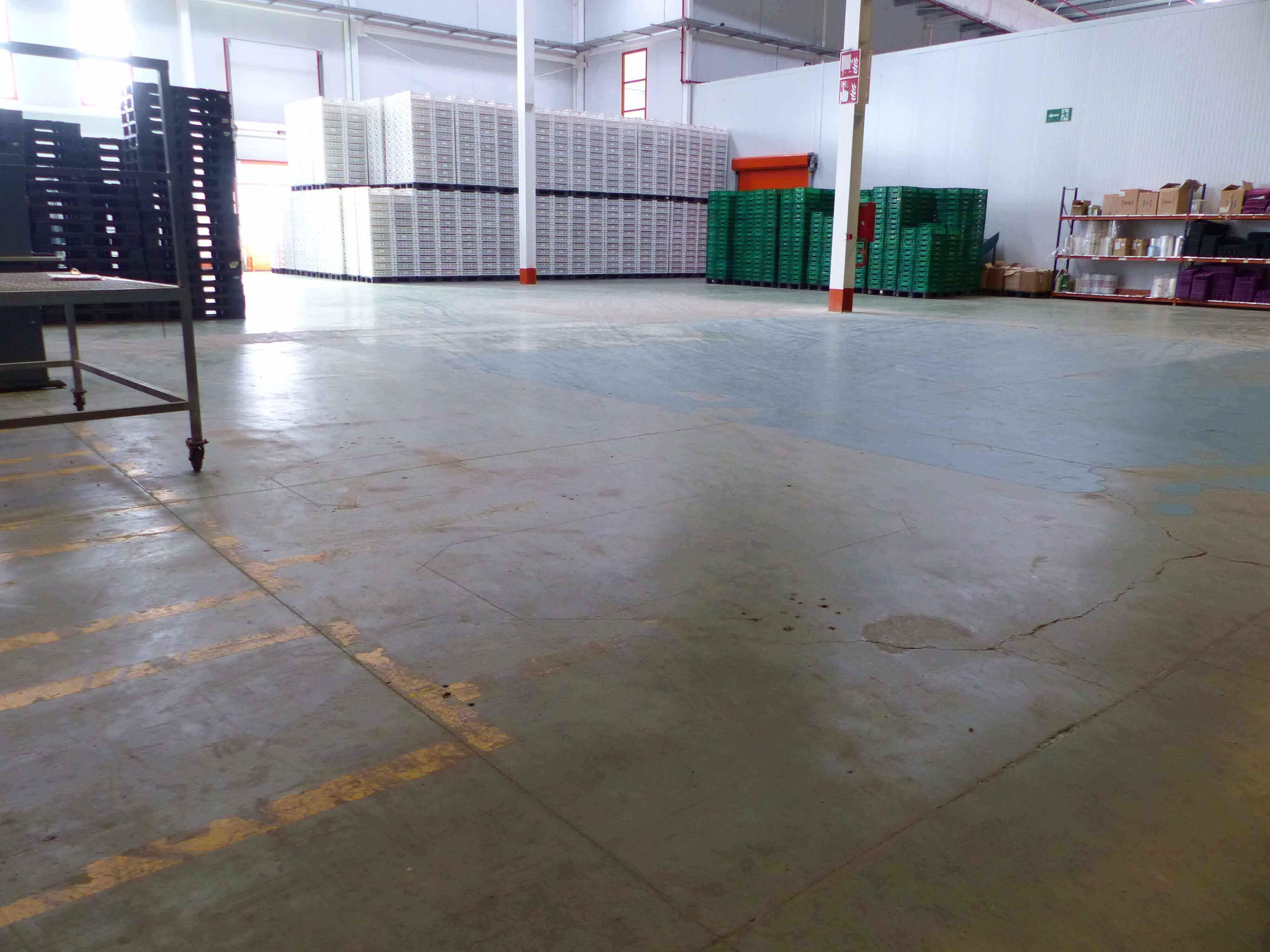 P1020292 - Montosa Spanien